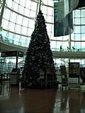 クリスマスツリー2F