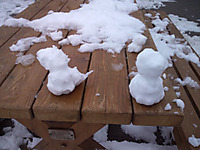 土山SA雪だるま