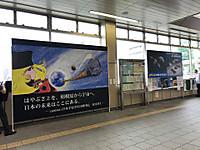 20180627fuchinobe