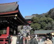 初詣Part2~鎌倉宮&鶴岡八幡宮