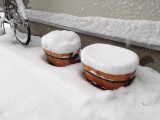 大雪日午後の様子