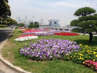 6/16:横浜海辺散策